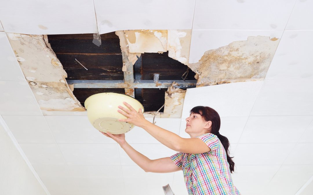 Roof Leaking Young Woman Collecting Water In basin From Ceiling.